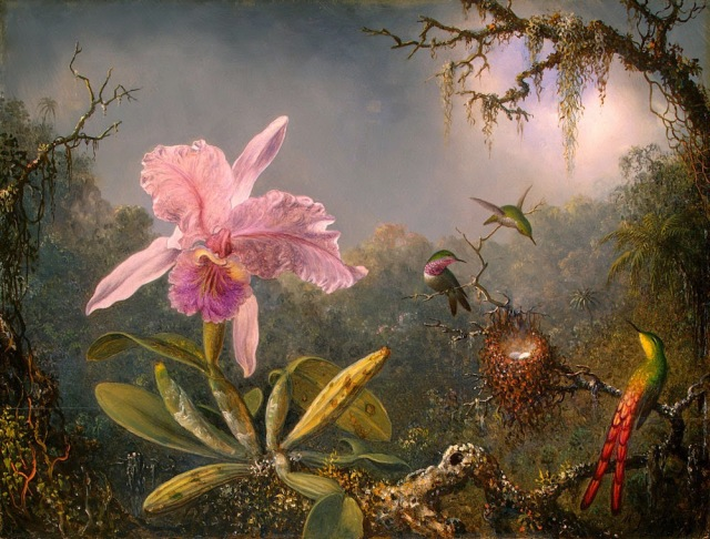 cattleya-orchid-and-three-hummingbirds-1871