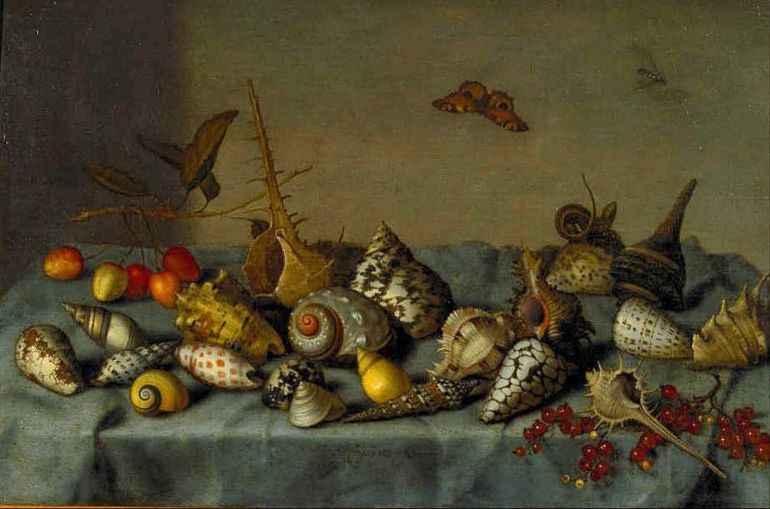 Bartholomeus_van_der_Ast_still_life_with_shells